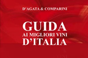 D'Agata Comparini 2013